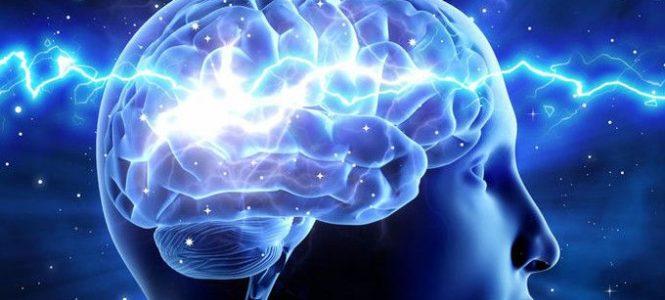 higher consciousness brain