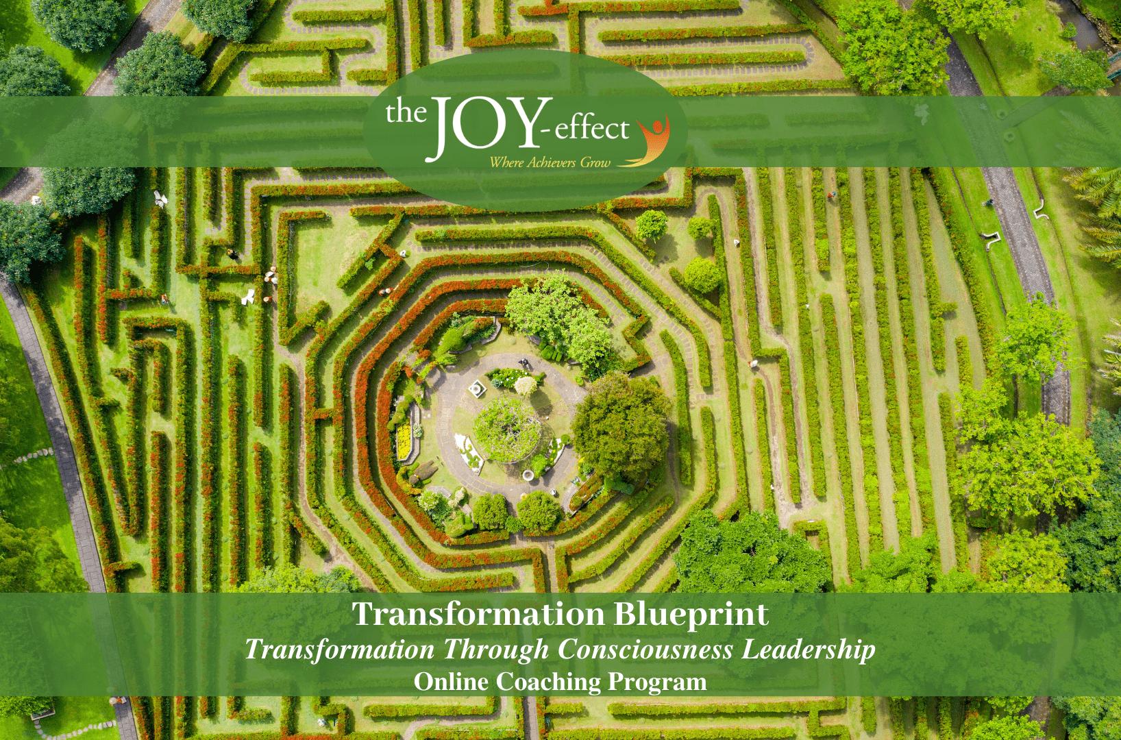 change through optimal transformation